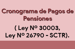 Cronograma de pagos pensiones
